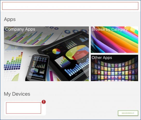 Intune Company Portal Color Scheme Experience